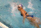 swimmer-659907_1280